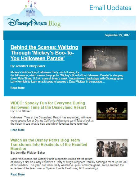 Disney Newsletter example